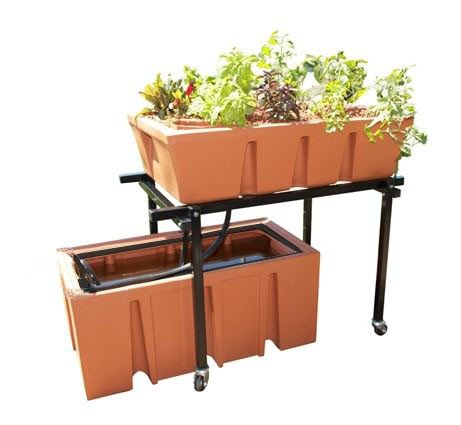 Large home Aquaponics