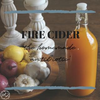 fire cider- homemade antibiotics